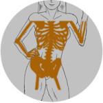 enfermedades-relacionadas-con-la-menopausia-osteoporosis