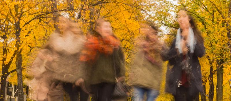 Qué sucede durante la menopausia